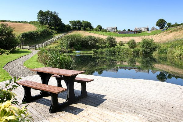 the deck and pond at helsbury park