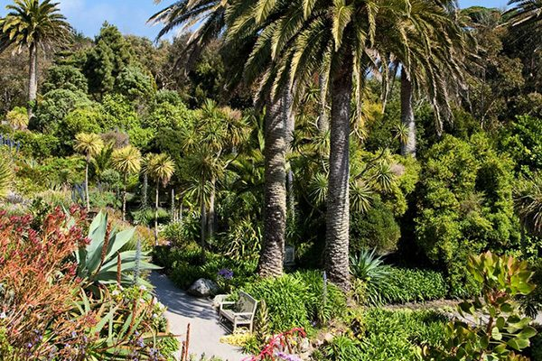 gardens to visit in cornwall