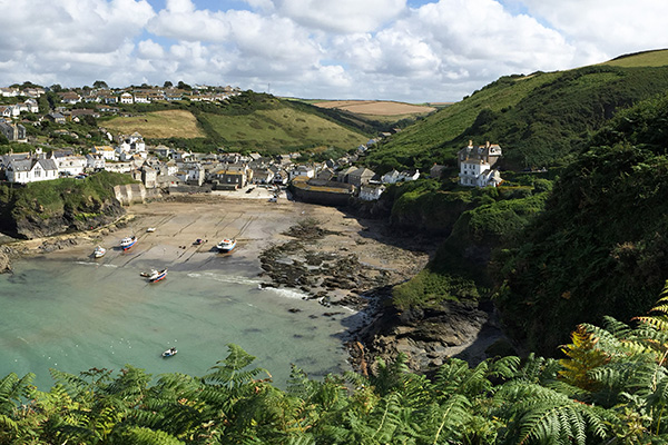 dog friendly holiday cottages in cornwall