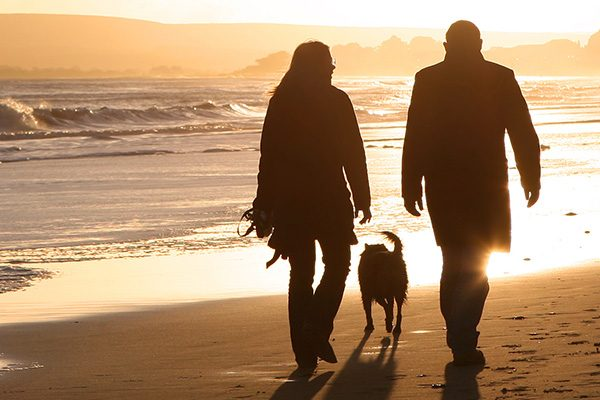 Places to walk your dog in north cornwall