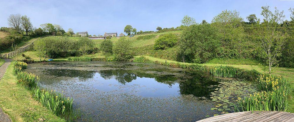 Helsbury Park Pond Wildlife Nature Walks