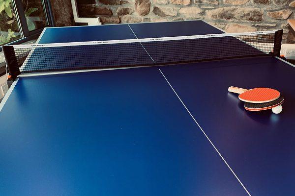 helsbury table tennis table